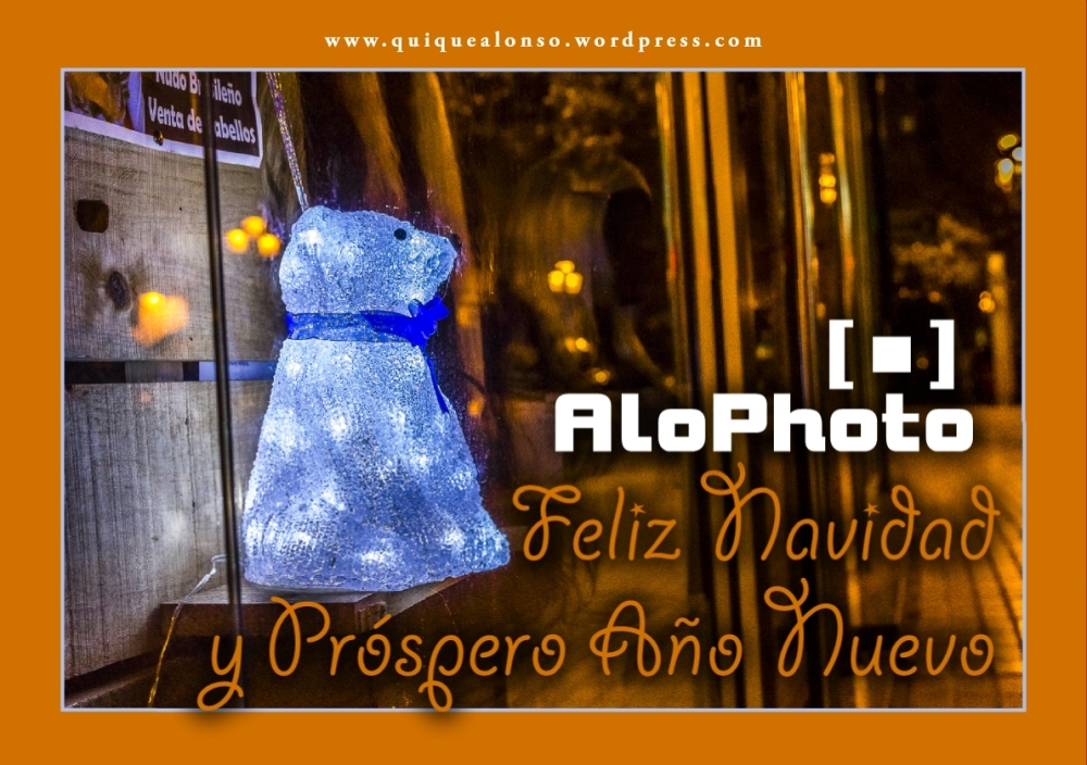 AloPhotoNavidad2015